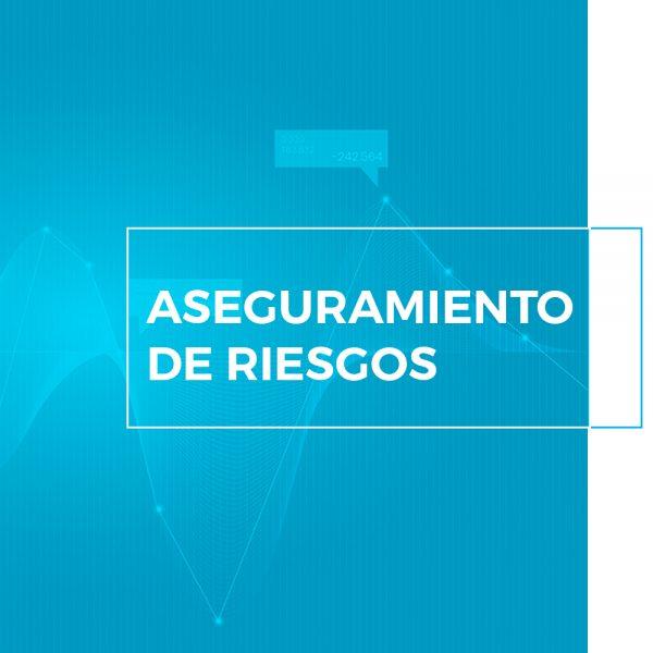 risk-assurance-service